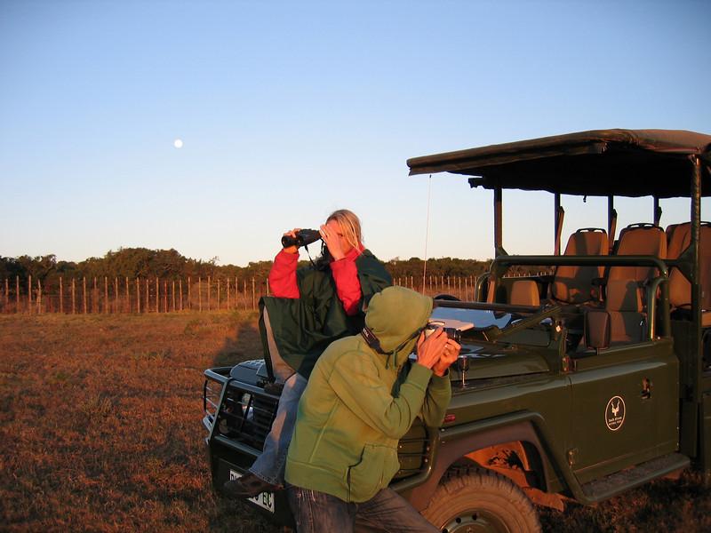 D10 on safari Addo 6.JPG