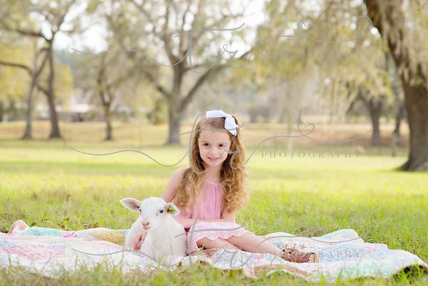 Ava~Little Lamb