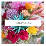 emmy ray | designer