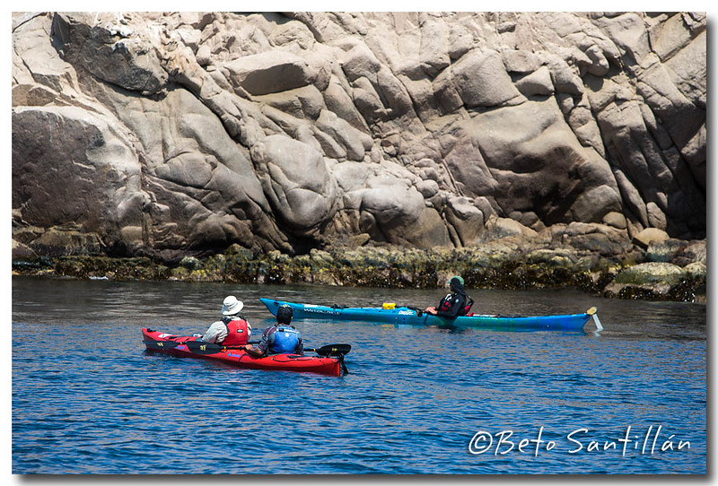 SEA KAYAK 1DX 050315-1281.jpg