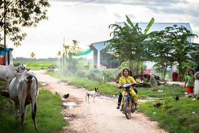 캄보디아 2017