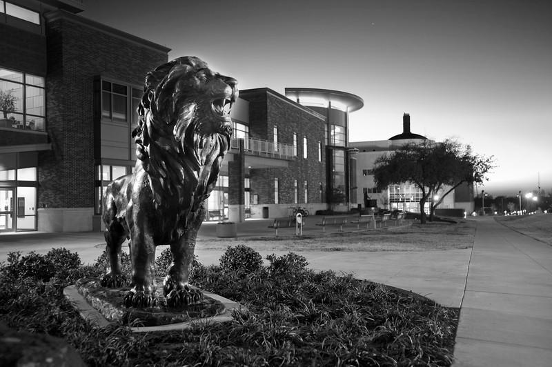10073-New Lion Statue-2850 (2).jpg