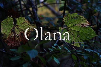 Olana -- Scouting