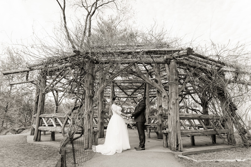 Central Park Wedding - Ariel e Idelina-191.jpg