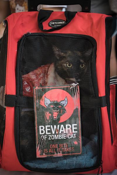 VividSnaps-The-Seletar-Mall-CAT-Dress-Up-Contest-084.jpg