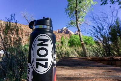 Zion National Park 2021