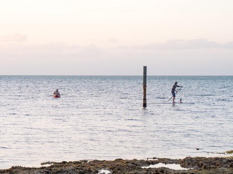 barracuda hunters