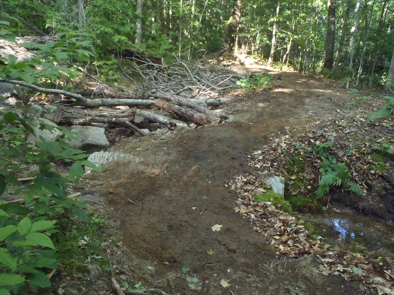 New Hampshire: New Trail Construction, Appalachian Trail