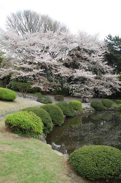 37-Japan07_1450.JPG