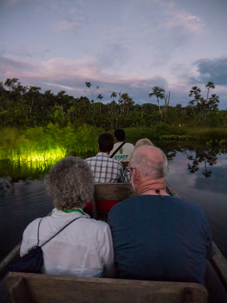 Looking for wildlife at dusk.