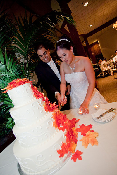 Emmalynne_Kaushik_Wedding-1206.jpg