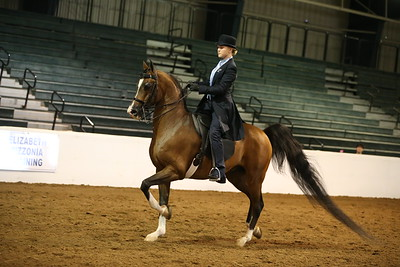 51 925 Saddle Seat Equitation 18 & Under