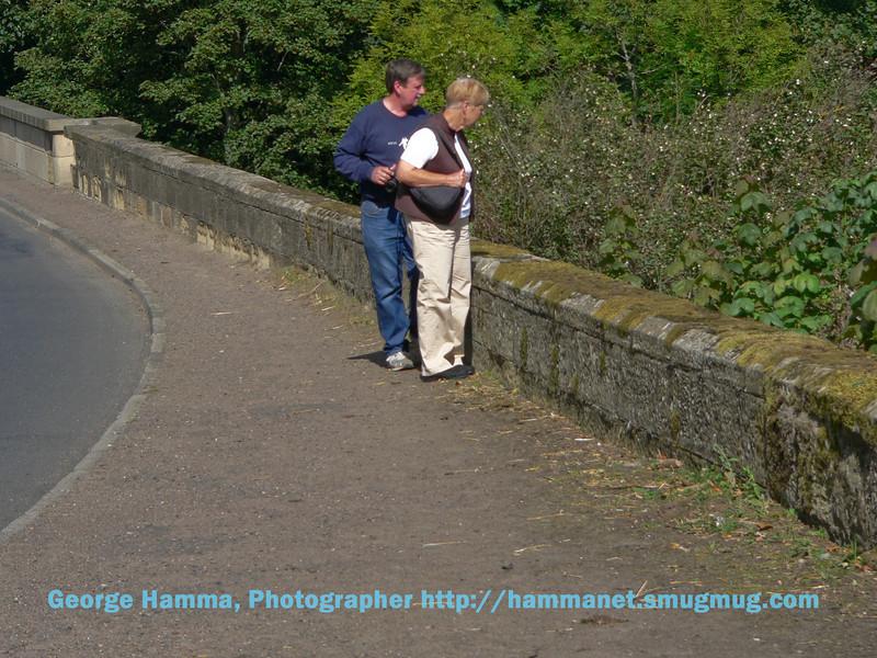 Near Alnwick Castle