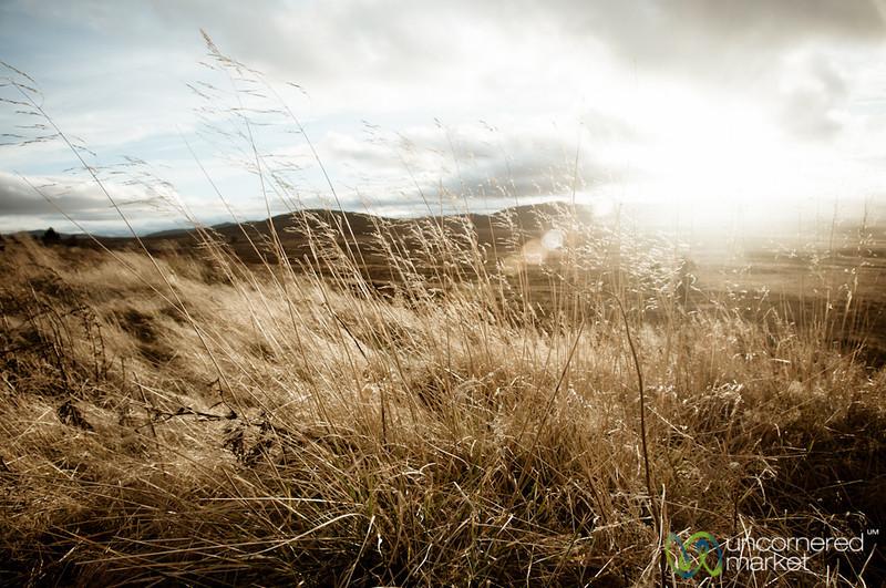 Sunset in Scottish Countryside - Speyside
