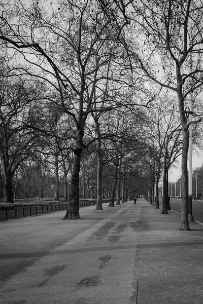 London_March_2015-15.jpg