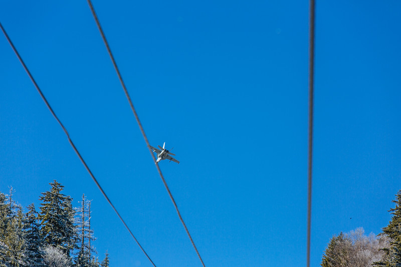 Blue Bird Jan 25-4262.jpg