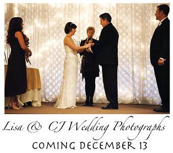 Lisa and CJ Wedding