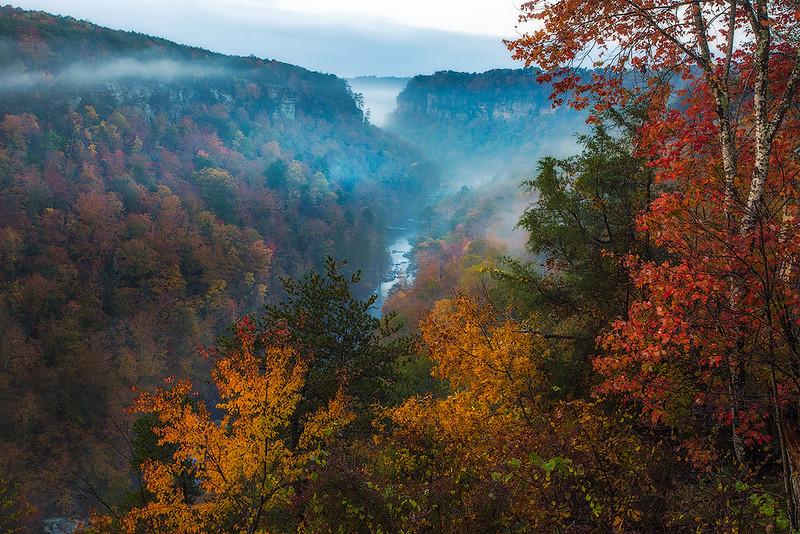 Little River Canyon Fall Fog and Color web.jpg