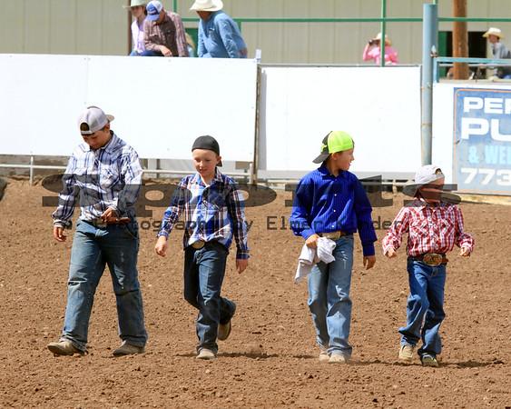 2016 Klickitat County Fair & Rodeo Sheep Dressing