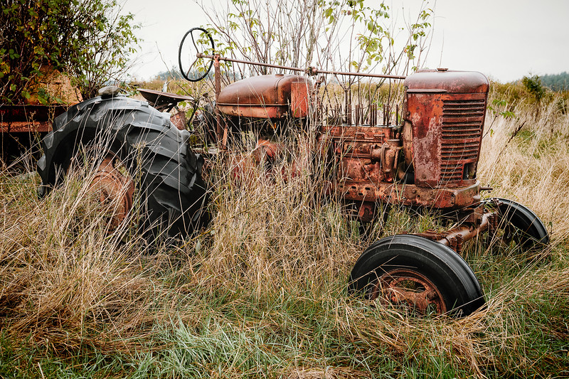 An old tractor fades into the landscape in a field on Lopez Island.
