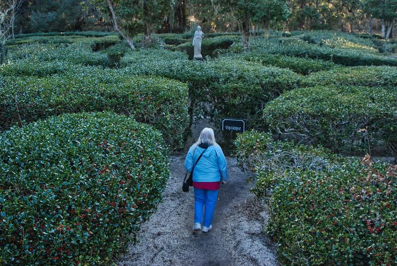 Garden Maze at Magnolia Gardens