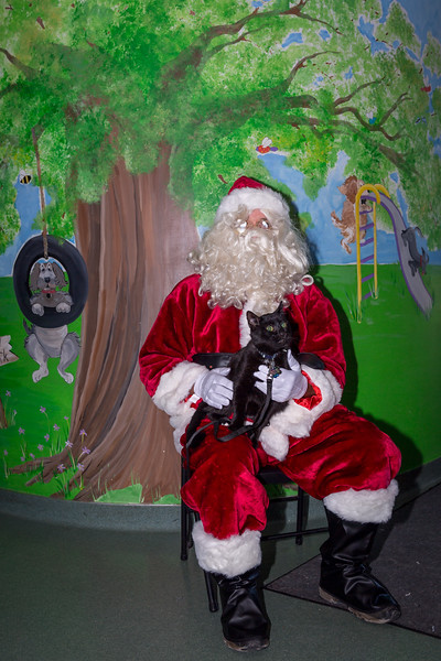 Pet Pictures With Santa-1.jpg