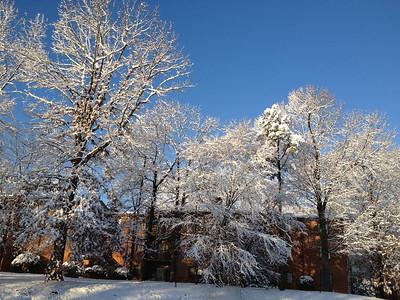2012 02-20 Snow Day