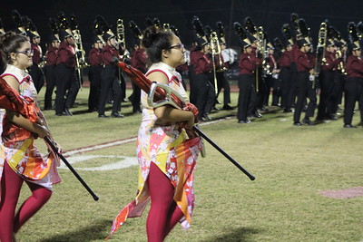 Devine Band  during Pearsall game