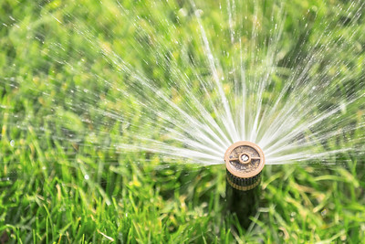 you-can-keep-your-lawn-watered-and-practice-water-conservation