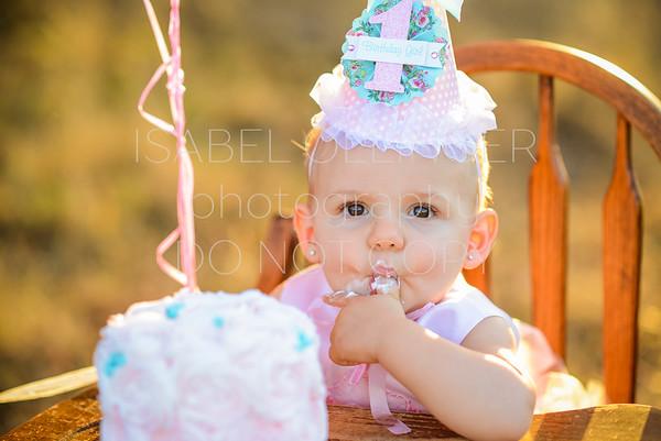 1st Year Sessions {Cake Smash}