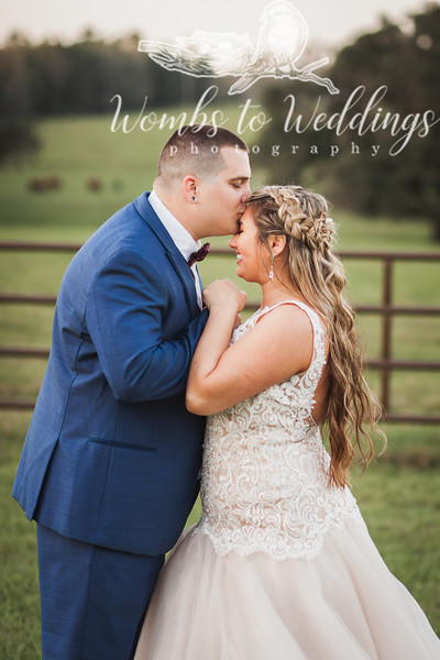 Central FL wedding photographer-3710.jpg