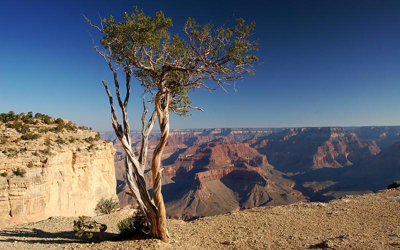 The Grand Canyon, Arizona, USA.