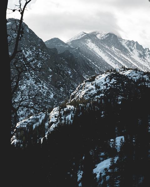 Rocky Mountain Black and White beauty-1.jpg