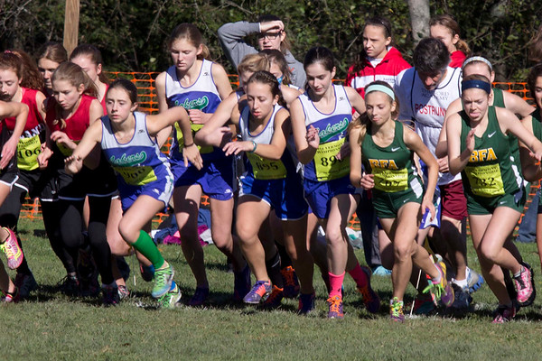 State Meet - Division I 10/25/14