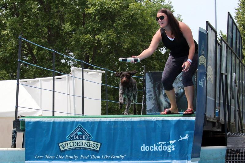 2015.8.6 Winnebago County Fair Dock Dogs (29).JPG