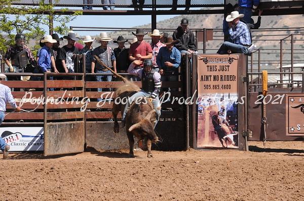 Bulls Third Section