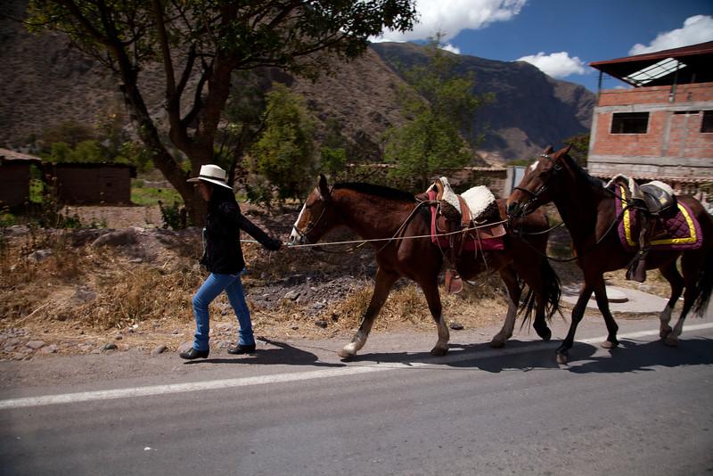 Peru_168.jpg