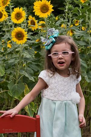 sunflowers; Nadia 2nd bday