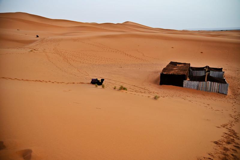 day4-SaharaCamp-43.jpg