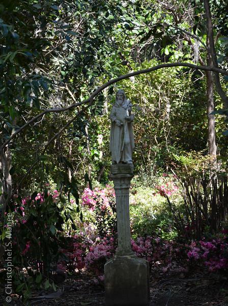 Magnolia Gardens, Charleston, SC