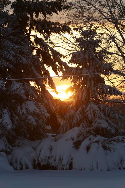 snow 2010 feb IMG_2387 (6).JPG