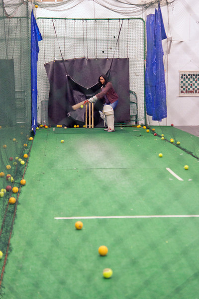 Batting at the Nets