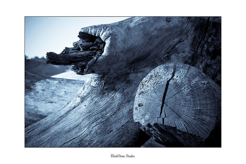 pena adobe logs-.jpg
