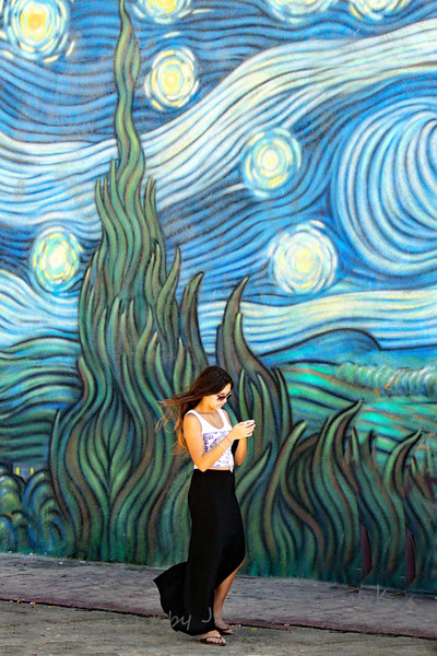 Starry Starry Night - Judith Sparhawk