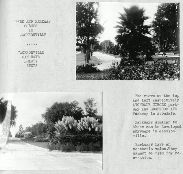 City Plan of Jacksonville Florida