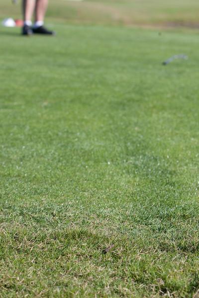 2010_09_20_AADP Celebrity Golf_IMG_0124_WEB_EDI_CandidMISC.jpg