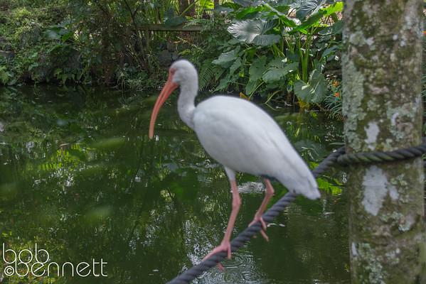 October 12-Ft. Lauderdale FL