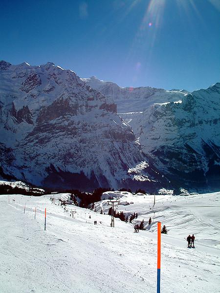 Grindelwald First - Trails.jpg