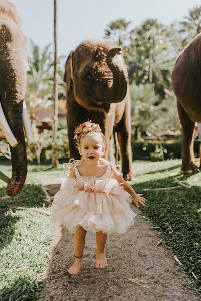 VTV_family_photoshoot_elephants_Bali_ (35).jpg