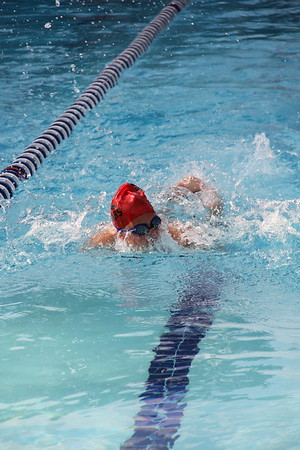 Swim Meet Eldrado Country Club 7 9 2018
